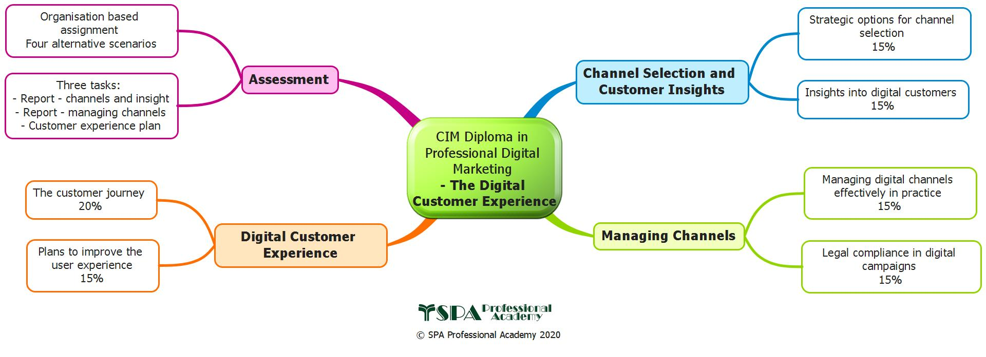 Digital Customer Experience (Elective)